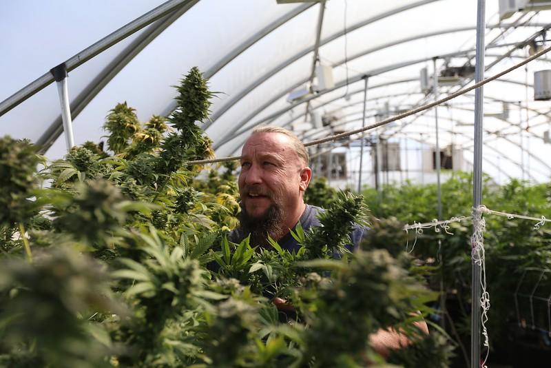 John Rotherham - Weed Grower