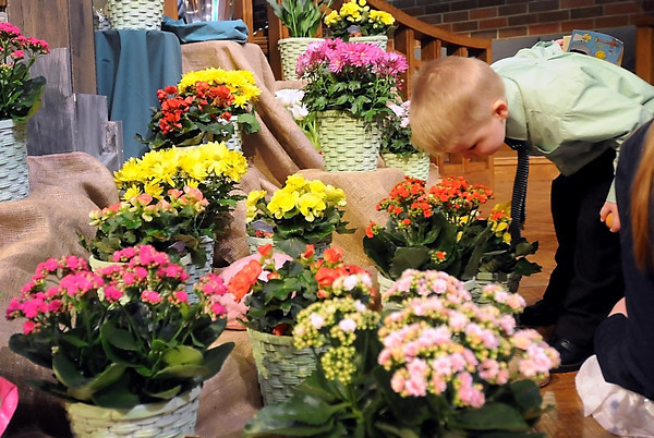 Ian Anderson, 4, gets a closer look, and smell, of flowers in an Easter display Sunday at Centenary United Methodist Church in Mankato.