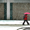 A woman protects herself from the frozen version of an April shower while walking on the MSU campus Thursday afternoon.