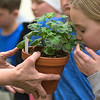 Chloe Sargent (right), a fifth-grader at Lake Crystal Elementary School, smells a geranium plant being passed around by Kirsten Phelps at Environmental Learning Day. Seven environmental professionals gave the students hands-on presentations about their particular field. Photo by Jackson Forderer