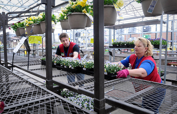 A lot of bare shelving surround Ryan Vadnais and Becky Beyer as they move a few pansies and violas on Monday at the gardening section at Lowe's. Cold weather this past spring has delayed the gardening season, but Beyer said the shelves should be full late this week as the full spring supply of plants begin to arrive. Photo by John Cross