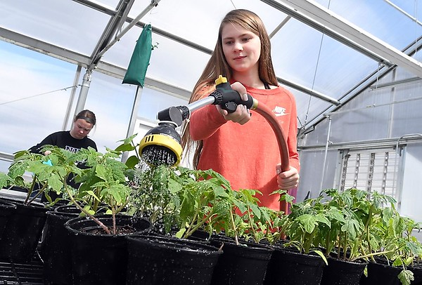 New Ulm High School greenhouse 1