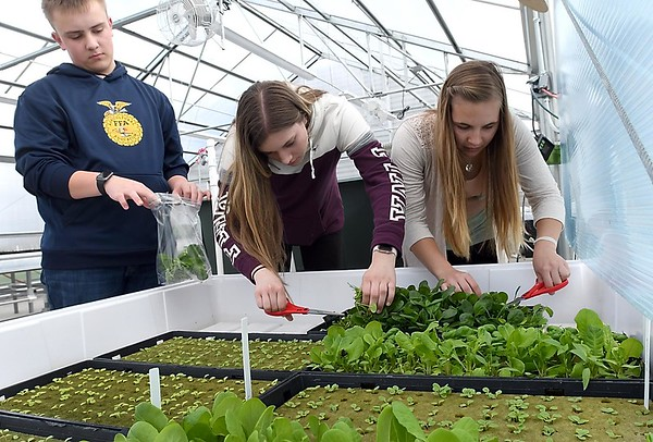 New Ulm High School greenhouse 2