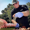 John Cross<br /> Minnesota State alumn Pat Nelson serves up samples on Thursday of his barbecue products at the MSU campus. The former Maverick wrestler and owner of Big Boned BBQ Company of Charleston, S.C.,is in town to compete in Mankato's 15th annual RibFest that began today and continues through Sunday at Riverfront Park.