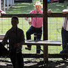 John Cross<br /> Adults watch as a youthful entrant show her animal at the 4-H Beef Show during the Blue Earth County Fair on Friday. The fair continues through Sunday.
