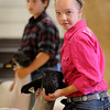 John Cross<br /> With a purple ribbon already in her back pocket, Isabella Mohwinkel of Amboy keeps her eye on the judge as he appraises animals during the Tri-County Fair in Mankato on Wednesday.