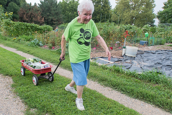 Sister Mary Jo Welter carries her haul of fresh vegetables out of the Good Counsel community garden on Tuesday. Welter, who has been gardening in her plot since 2010, said she needs the wagon to carry the large amounts of vegetables she gets. Photo by Jackson Forderer