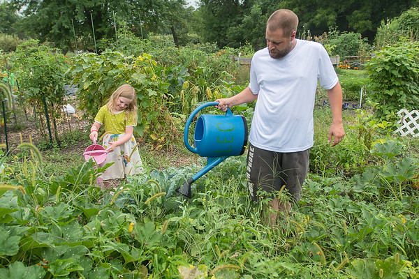 """Ryan Ehler (right) and McKenna Ehler, 5, water their plot of vegetables at the Good Counsel community garden on Tuesday. Ryan said they are growing borage, soy beans, pumpkins, brussel sprouts and different kinds of peppers. """"You can tell that we have pumpkin because there's a pumpkin right there,"""" McKenna said as she pointed to a small orange pumpkin growing in the plot. Photo by Jackson Forderer"""