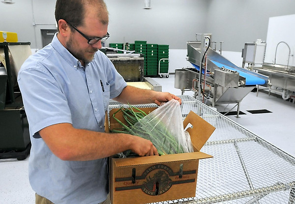 Minnesota Valley Action Council's Joe Domeier goes through a box of fresh vegetables at the organization's new food hub. The hub opened Thursday. Photo by Pat Christman