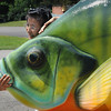 John Cross<br /> Kiyoko Inoue gets up close for a photograph with a  10-foot-long sunfish before it was hoisted atop the roof of Axel's Tackle Box in Waterville on Monday. Inoue, who is from Japan, was visiting the Waterville.