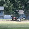 Harness racing 1