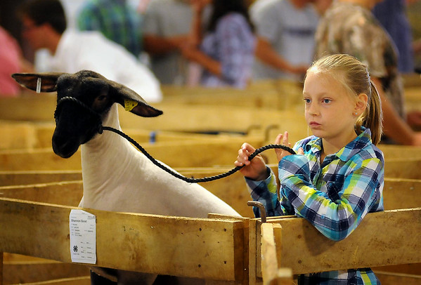 Shannon Soost, a member of the Nicollet 4-H Club, and her sheep await their turn in the ring at the Tri-County Fair in Mankato on Wednesday. This is the 77th year of the fair that brings 4-H youth from Nicollet and Blue Earth Counties together to show off their animal husbandry skills. Photo by John Cross