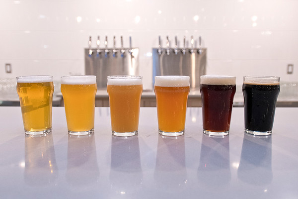 LocAle Brewing Co. currently has six different beers and is looking to expand to 12 in the future. From left they are, MN SMaSH, Callisette, Coneflower, Doradus, Bitter Wind, Deep Valley and Deep Valley with coffee. Photo by Jackson Forderer