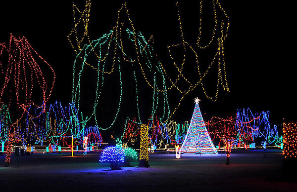 A large multicolored tree dominates the middle of the Sibley Park display.