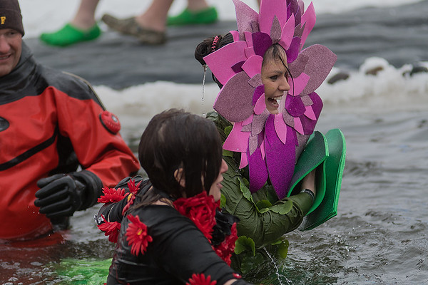 Two plungers dressed as flowers emerge from the waters of Hallett's Pond in St. Peter. Photo by Jackson Forderer
