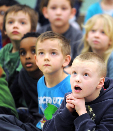St. Peter first graders stare in wonder at a peregrine falcon during a presentation by the University of Minnesota's Raptor Center.
