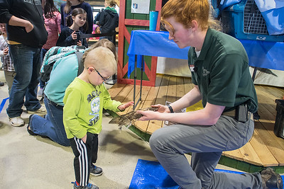 Ian Dorney of the Raptor Center holds out an owl wing for Westin Christianson, 3, to pet after a presentation at the Children's Museum of Southern Minnesota on Saturday. Dorney said he gets a lot of questions from children about owls being able to turn their heads around. He corrected a common misnomer and told children that owls can turn their heads three-quarters of the way around. Photo by Jackson Forderer