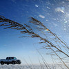 John Cross<br /> A stiff wind stirs up snow and rattles the skeletons of  roadside vegetation along Highway 83 near St. Clair on Wednesday.