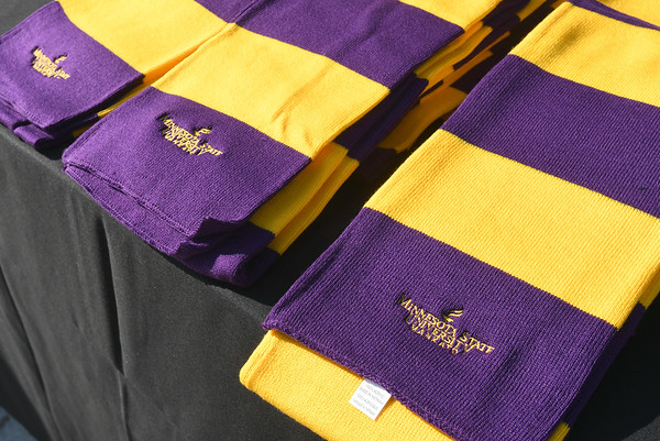 Scarves for students 2