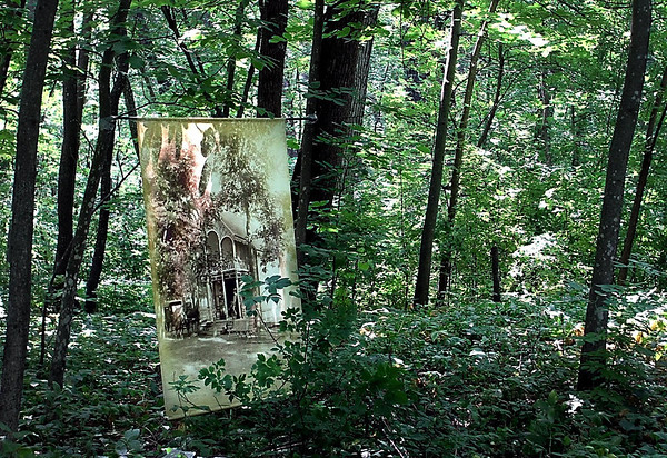 A picture of one of the cottages that used to sit in the woods of Waseca's Maplewood Park hangs from a tree during Saturday's Chautauqua.