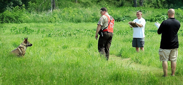 John Cross<br /> Duke, a 2 1/2-year old German shepherd awaits commands from his handler, Sgt. R.S. Berg of the Chisago County Sheriff's Office as judges watch them search the tall grass for a match book and a shred of leather in an article search exercise. The two were participating in the United States Police Canine Association Region 12 Field Trials that will continue through today.