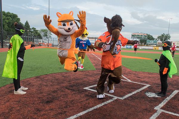 Woody (left) from Woodfellas jumps towards the finish line  at the end of the second heat of Muttnik's Mascot Trot, being edged out by Mammoth from Northwestern Mutual at the LEEP celebrity softball game held on Thursday evening at Franklin Rogers Park. The mascot race was a new feature of the charity game, with 14 different mascots competing in the event. Proceeds from the charity game benefit LEEP programming. Photo by Jackson Forderer