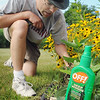 Even though he's not a fan of chemical insect repellants, Bethany Lutheran College professor Chad Heins says he occasionally will use DEET-based repellants to keep insects at bay. Photo by John Cross