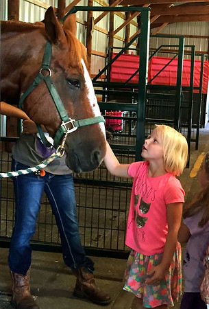 Cora Wood, 6, of Mankato, and her cousin Charlotte Wood, also 6, visit 4-H participant Kristina Schroeder's quarter horse named Sonny during the Blue Earth County Fair in 2016. The girls said they were eager to see all of the animals at the fair. File photo