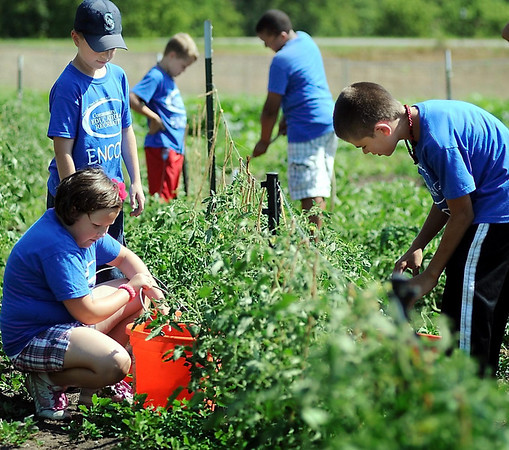 John Cross<br /> Encore members tend to plants at the Blue Earth County Community Garden.