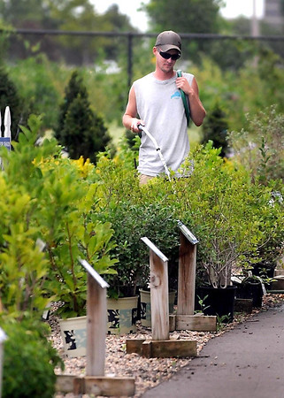 Mark Lynch waters plants at Drummer's Garden Center Thursday afternoon. Watering lawns and plants has been a neverending job for Lynch and others during the recent hot spell.