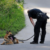 John Cross<br /> A police dog and its handler take a break after emerging from the heavily wooded bluffs behind the Happy Chef restaraunt. The heat and humidity made for extremely difficult search conditions for dogs and law enforcement personnel.