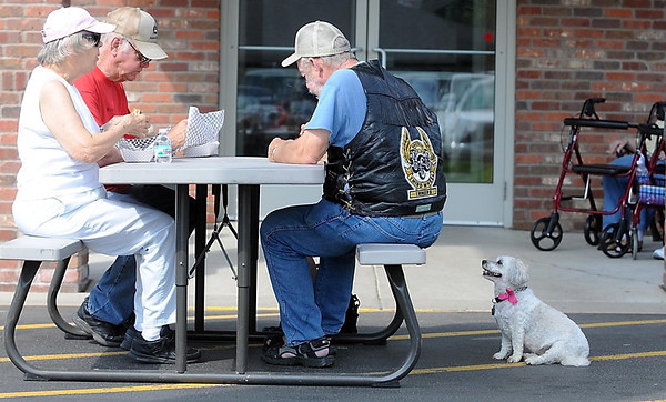 A dog named Samantha hopes to get some of Doug Zahnow's leftovers during Primrose Retirement Community's 15th anniversary celebration Wednesday. Photo by Pat Christman