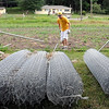 John Cross<br /> Volunteers (from left) Michelle Maxwell, Thane O'Rourke and Damion Etherington lay out fence posts at the Blue Earth County Community Farm at Weagel Park at the intersection of Highway 66 and Inidan Lake Road. Volunteers erected a fence around the farm Thursday to protect it from animals.