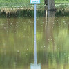 A currently unnecessary sign at Beyer Field off of Leland Parkway in Blue Earth. Blue Earth received up to six inches of rain on Sunday. Photo by Jackson Forderer