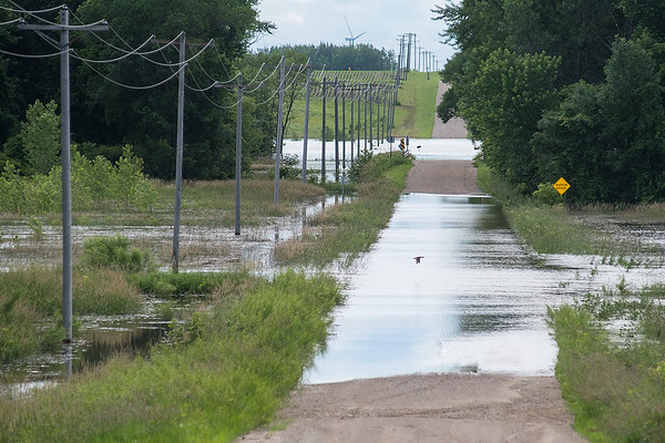 Looking west onto Catholic Church Rd., the road is flooded over twice; once by the Blue Earth River (closest) and Badger Creek (furthest). The Faribault County Board hopes to get disaster relief from the state and the Federal Emergency Management Agency. Photo by Jackson Forderer