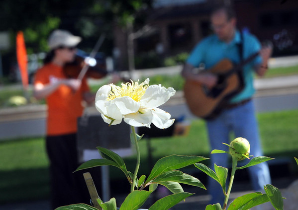 Anna Wigtil and her father Paul play music near a flower stand at the Mankato Farmers Market Tuesday.