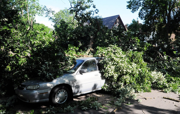 A car parked along Byron Street was damaged when a large oak tree fell on in Tuesday morning. Photo by John Cross