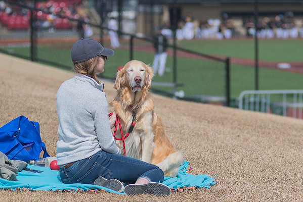 Tori Rudolph pets her dog Max while rooting for the Bethany Lutheran baseball team as they took on Gustavus at Franklin Rogers Park on Saturday. Photo by Jackson Forderer