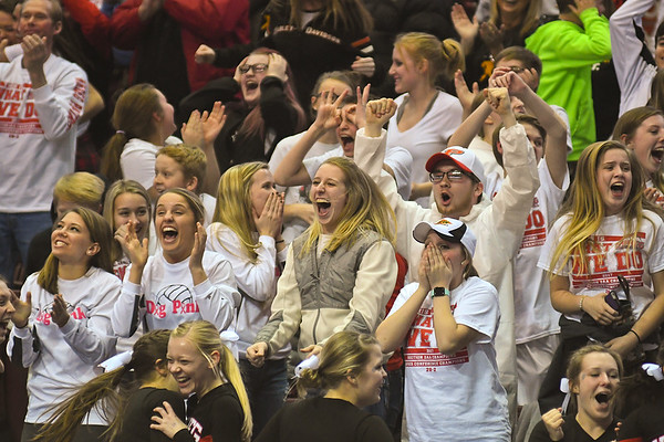 The New Richland-Heartland-Ellendale-Geneva student section erupts after Benji Lundberg hit a 3-pointer to send the game against St. Cloud Cathedral into overtime. It is the NRHEG boys basketball team's first trip to the state tournament. Photo by Jackson Forderer