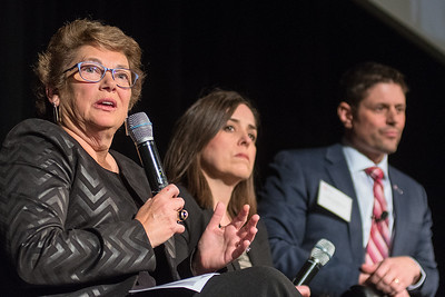 Julia Corbett (center) and Todd Loosbrock (right) listen to Trudie Gustafson speak during a panel discussion about the past, present and future of Greater Mankato Growth at the business association's annual meeting held at the Verizon Center on Tuesday. Photo by Jackson Forderer