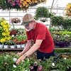 Green Thumb gardner retiring