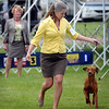John Cross<br /> A judge scrutiizes Andrea Bryant of Muscatine, Iowa, and her vizsla, as they go through the motions Friday at the Key City Kennel Club's All Breed Dog Show.