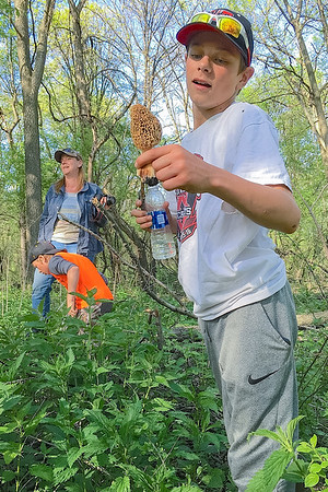 Buck Wiebers holds up a Morel while he and his family members hunted for them. Photo by Amanda Dyslin