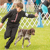 Key City Kennel Club Dog Show 2