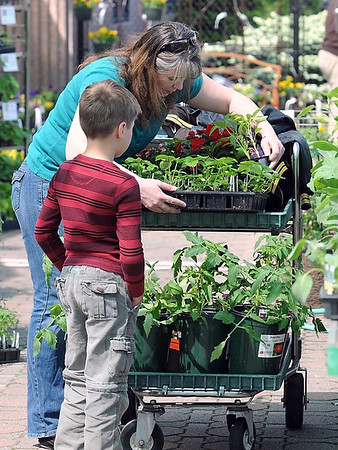 Laura Borneke-Schauer and her son Erik Schauer, 7, load up their cart with flowers and plants Saturday at Drummer's Garden Center in Mankato.