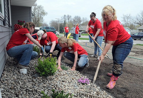 From left, volunteers Tara Nelson, Mindi Hawks, Julia Carter, homeowner Sara Fjoser and Lowes live nurseryt specialist Becky Beyer put the finishing touches on some landscaping around Fjoser's Habitat For Humanity home as part of National Women Build Week Thursday in Mankato. Photo by Pat Christman
