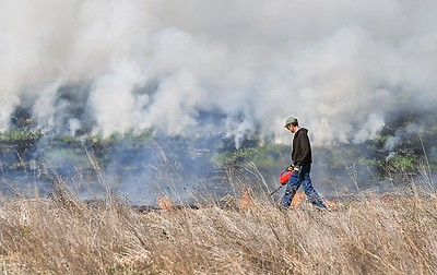 Benson Park controlled burn