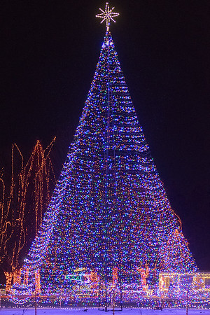 The main Christmas tree in the center of Sibley Park. The Kiwanis Holiday Lights event is expecting it's one millionth visitor this year. Photo by Jackson Forderer