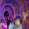 People walk through the pedestrian light tunnel during the opening night of the Kiwanis Holiday Lights on Friday in Sibley Park. Photo by Jackson Forderer