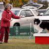 Pat Wilkie keeps her dog Galen on a platform during a run on the standard agility course Saturday.